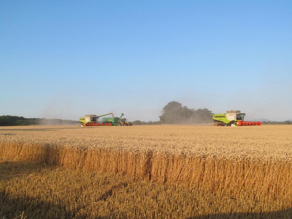 actions bourses fermes céréales