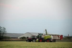 agriculture et bourse
