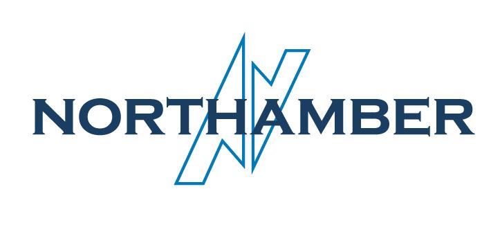 Bas les masques – Northamber plc